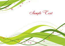 Abstract green template. Elegant abstract green template. Vector Stock Image