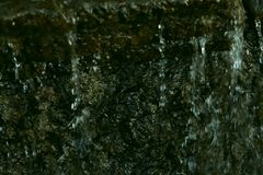 Abstract green texture of natural stone and flowing water. The source of water in the mountains. stock images
