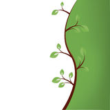 Abstract green tree background Royalty Free Stock Images