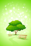 Abstract Green Tree Background with Bench Stock Images