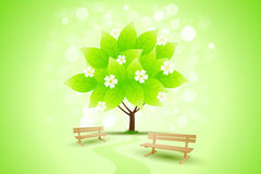 Abstract Green Tree Background with Flowers. Benches and path for your design Stock Photo