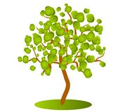Abstract Green Tree Clip Art. A clip art illustration of an abstract looking tree with green swirl leaves isolated on white background Royalty Free Stock Images