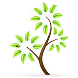 Abstract green tree icon Stock Images