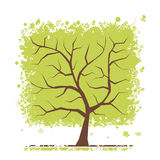 Abstract green tree for your design Royalty Free Stock Image
