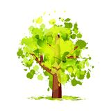 Abstract green tree for your design Royalty Free Stock Images