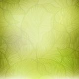 Abstract green vintage background Royalty Free Stock Photos