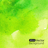Abstract green watercolor background. Vector watercolor illustration Stock Photography
