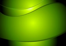 Abstract green wavy vector background Stock Photography