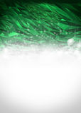 Abstract green and white background Stock Images
