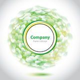 Abstract green-white element for company. Stock Photo