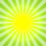 Abstract green-yellow background. With sunburst (vector Stock Images