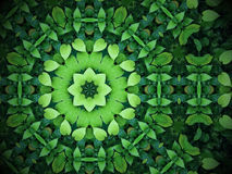 Abstract greenery background, heart shaped green leaves with kaleidoscope effect stock illustration