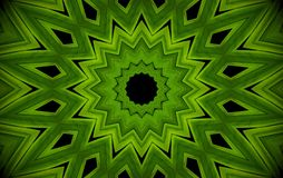 Abstract greenery background, palm leaves with kaleidoscope effe. Ct, mandala flora geometric pattern Stock Images