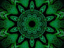 Abstract greenery background, palm leaves with kaleidoscope effe Royalty Free Stock Images