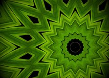 Abstract greenery background, palm leaves with kaleidoscope effe. Ct Stock Images