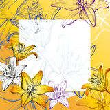 Abstract greeting card  floral blooming lilies background hand drawn vector  illustration  sketch Stock Photo