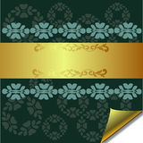 Abstract greeting card with Gold and Green element Stock Images