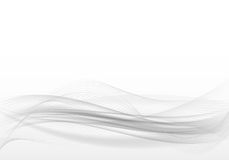 Abstract grey background.Transparent waves and lines on a white background. Royalty Free Stock Photo