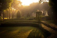 Abstract groen gras natuurlijke als achtergrond met een mooie Bokeh Royalty-vrije Stock Fotografie