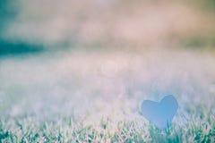 Abstract groen gras natuurlijke als achtergrond met een mooie Bokeh Stock Foto
