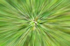 Abstract groen kleurenonduidelijk beeld Royalty-vrije Stock Afbeeldingen
