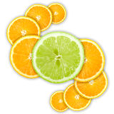 Abstract group of cross citrus fruits Royalty Free Stock Image