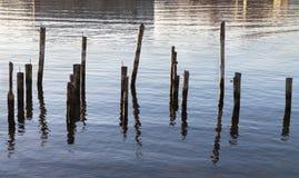 Abstract group of pillar. Stock Photo