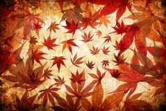 Abstract grunge autumn background Royalty Free Stock Image