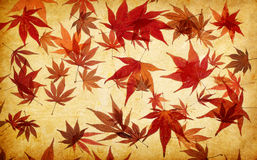 Abstract grunge autumn background Royalty Free Stock Images