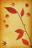 Abstract grunge autumn background Stock Image