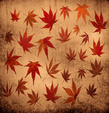 Abstract grunge autumn background with leaves vector illustration