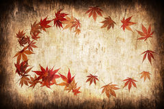 Abstract grunge autumn background with leaves Stock Photos