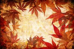 Abstract grunge autumn background with leaves Royalty Free Stock Photo