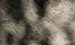 Abstract grunge background on a brick wall, place for your text Royalty Free Stock Images