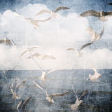 Abstract grunge background with clouds and seagull. Royalty Free Stock Photo