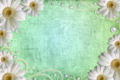Abstract grunge background with daisy Stock Photography