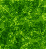 Abstract grunge background, green texture stock illustration