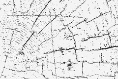 Abstract grunge background. Grunge cracked wood texture Royalty Free Stock Images