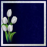 Abstract grunge background with tulips Stock Photo