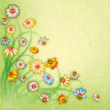 Abstract grunge color floral background Royalty Free Stock Photo