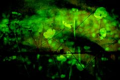 Abstract grunge excellent background. With flowers stock photo