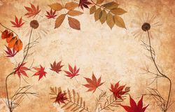Abstract grunge floral background with leaves Royalty Free Stock Image