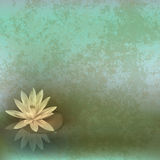 Abstract grunge illustration with lotus Royalty Free Stock Photos