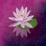 Abstract grunge illustration with lotus Stock Photo