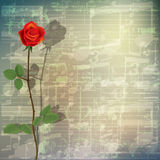 Abstract grunge music background with red rose. Abstract grunge green cracked music symbols vintage background with red rose Stock Photos