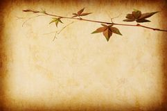 Abstract grunge texture background Royalty Free Stock Images