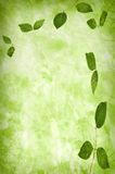 Abstract grunge texture background with leafs Stock Photo