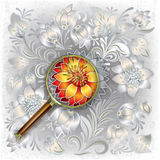 Abstract background with magnifying glass and flor Royalty Free Stock Images