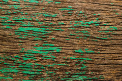 Abstract grunge wood green color texture for background Stock Photos