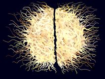 Abstract Hairy Brain. An abstract design rememberig a hairy brain Stock Images